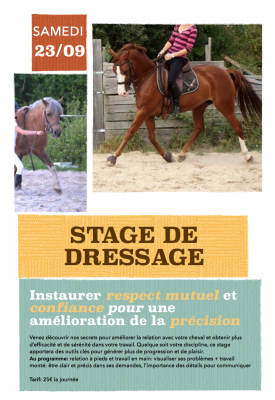 stage dressage ecuries de bellevue