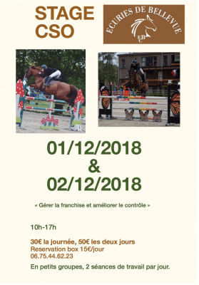 stage CSO saut d'obstacles