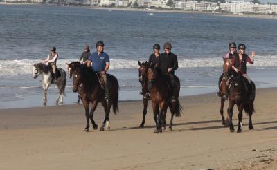 ecuries de bellevue plage chevaux