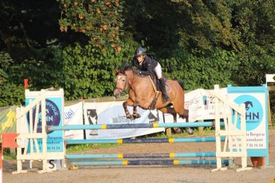 saut d'obstacle angers