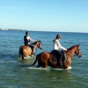 chevaux a la mer